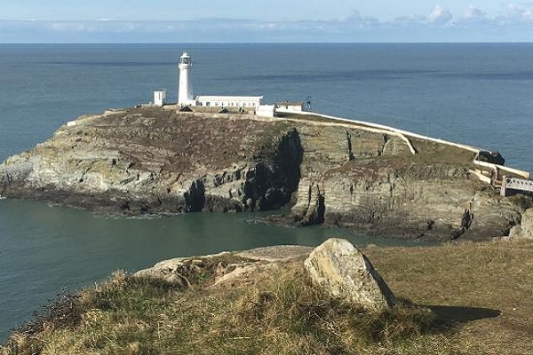 RSPB South Stack Cliffs Reserve in Anglesey